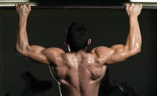 pull-up upper back exercise